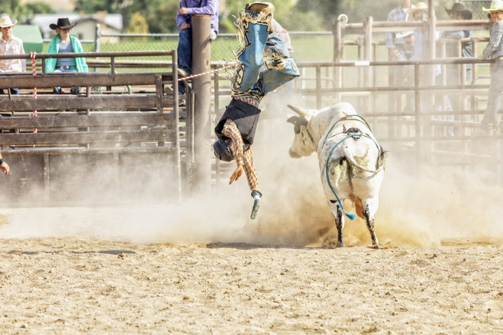 Bull rider, mid air, upside down, with bull looking back rider in a dusty rodeo arena.